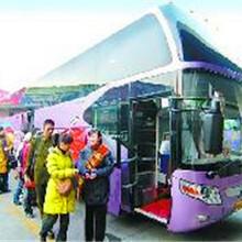 温岭客运郑州到温岭大巴186/2557/7917万里客运大巴车图片
