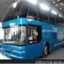 176/9806/8282郑州到余姚大巴长途卧铺车wp图片