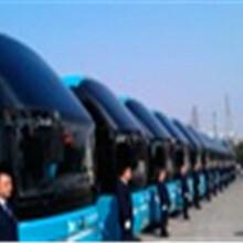 长途郑州到泸县大巴130/076/12038直达物流客运图片