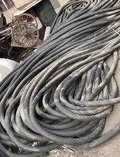 上海设备用电缆线回收,上海配电房电缆线回收,上海二手电缆回收,上海回?#31449;?#30005;缆线,图片