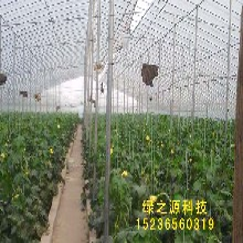 山西蔬菜大棚骨架花卉大棚镀锌钢管大棚大棚配件