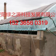 温室大棚骨架机钢管大棚价格