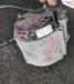 大眾途銳輝騰3.23.6發電機啟動馬達冷氣泵鼓風機電阻