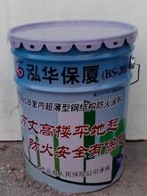 厂家直销泓华保厦钢结构防火涂料防火漆图片