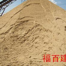 松江码头供应优质黄沙、石子销售/批发,上海水泥黄沙专业配送图片