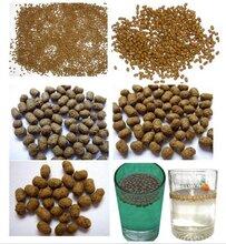 海参饲料专用颗粒粘合剂,区别于膨润土的植物添加剂图片