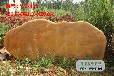 优质景观石价格大全园林景观黄蜡石