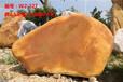 英德黄蜡石,黄蜡石厂家,黄蜡石批发