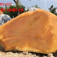 黄蜡石原石、刻字黄蜡石报价