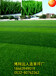 足球场人工草皮多少钱一平方米