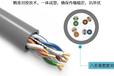四川D-Link超五類屏蔽網線廠家,上海D-Link六類屏蔽線纜