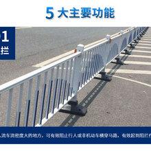 公园花箱隔离道路护栏喷涂钢铁防眩型隔离护栏