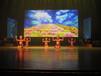 舞蹈少儿成人拉丁舞专业手把手教学