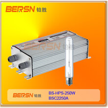 HPS250W高压钠灯电子镇流器HID镇流器调光镇流器图片