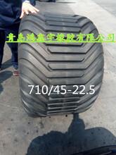 供应草地胎710/45-22.5林业机械轮胎-青岛鸿鑫宇橡胶有限公司图片