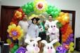 水晶气球培训周口气球培训婚房布置儿童派队