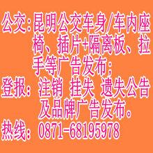 云南龙的文化传播有限公司