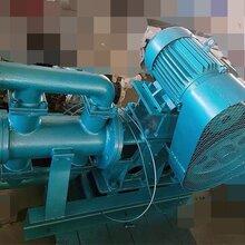 耐高温电动往复泵质量保证图片
