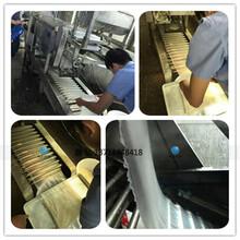潮汕营养粉皮机,哪里河粉机好用,小型粿条机生产厂家图片