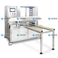 浙江包子自动排盘机厂家直销,省力月饼排盘机,酥饼生产线自动排盘机图片