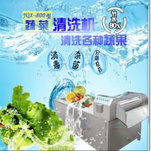 酒店用蔬菜清洗机惠州全自动洗菜机根茎类洗菜机设备多少钱图片