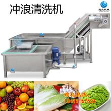 广州学校厨房用果蔬冲浪式清洗机清洗果蔬的机械设备自动蔬菜清洗机图片