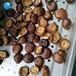 安徽香菇真空油炸机生产厂家直销旭众中型双室低温真空油炸机报价