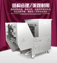 甘肃小额投资荞麦压面面条机多功能全自动面条机商用徐旭众机械品质就是保证图片
