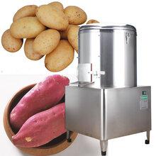 安顺饭店用土豆芋头脱皮机30kg薯仔脱皮机生产厂家直销图片