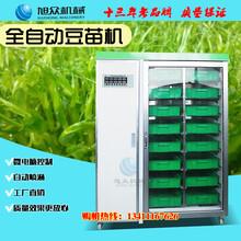 信阳厂家直供全自动豆苗机型号价格旭众大型绿豆苗机方便实用图片