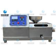 东营全自动花生榨油机小型台式芝麻油榨油机适用性广可用220V电图片
