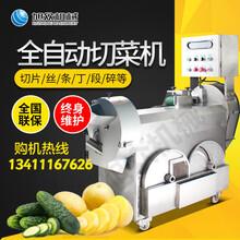 徐州食堂商用根茎类切菜机柠檬切片机器商用切菜机图片
