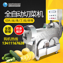 广州多功能全自动切菜机自动切姜丝姜片的机器设备两头多用切菜机图片