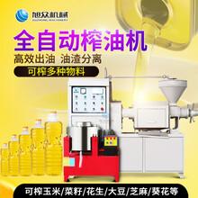 三亞椰子榨油機全自動商用螺旋榨油機花生菜籽榨油機器師傅上門圖片