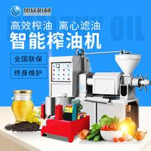 中山全自动榨油机多级推进压榨螺旋型花生菜籽榨油机适用性广图片