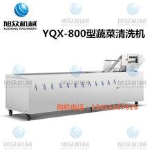 广州蔬菜清洗机鼓泡喷淋双层清洗机根茎蔬果自动清洗机图片