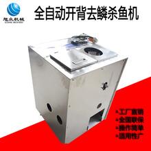 广州农贸市场用自动杀鱼机新款开肚去鳞杀鱼机生产厂家直供图片