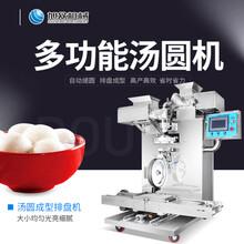 阳江全自动汤圆机视频搓圆成型排盘机米团子成型排盘一体机图片