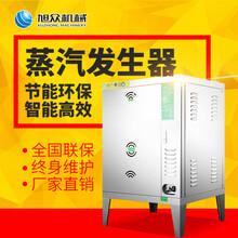 广州食品加工厂用燃气节能蒸汽机河粉机配用蒸汽锅炉图片
