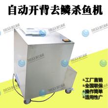 广州商用全自动杀鱼机电动去除鱼鳞机开背多功能杀鱼机图片