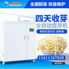 宁夏商用全自动豆芽机无土栽培无公害绿豆芽机多少钱一台图片