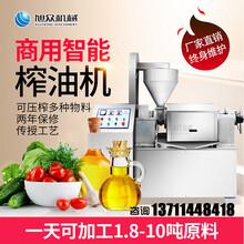 鄂州农村创业自动榨油机农产品花生大豆螺旋榨油机多少钱图片