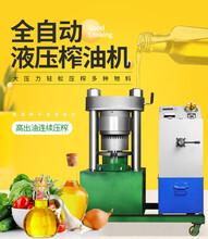 新型全自动液压榨油机佛山村里油坊花生榨油机成套设备图片