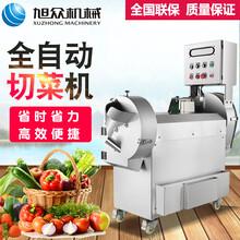 北京饭堂用多功能切菜机厂家直销全自动切菜机多少钱一台图片