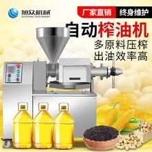 农村自动螺旋压榨芝麻油食用油榨油机220V小型榨油机多少钱一套图片