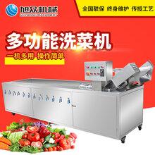 福建全自动商用水果蔬菜清洗机多功能洗菜机厂家直销图片