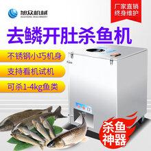 中山水产市场全自动去鳞开背开肚杀鱼机图片