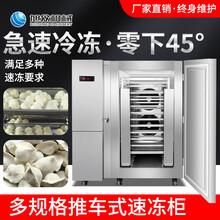 惠州食品廠包子速凍柜商用餃子湯圓速凍設備圖片