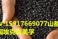 密封件墊圈TPV??松梨?01-45W255銅接觸穩定TPV耐臭氧性