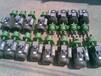 微型齿轮泵S-10,S-25小型齿轮泵厨房专用泵